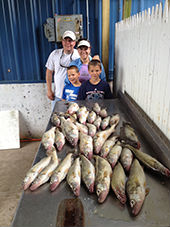 Group with a limit catch of Lake Erie Walleye aboard In The Net with Captain Matt Hehn